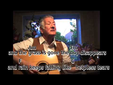 What Have They Done To The Rain -  cover - easy chords guitar lesson - on-screen chords and lyrics