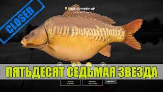 Пятьдесят седьмая звезда карп линейный на оз Янтарное Русская Рыбалка 4