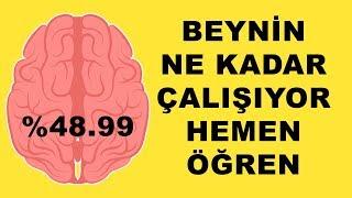Çalışan Bir Beyniniz Olup Olmadığını Öğrenin. Zekanız Var mı Yok mu? 2019