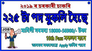 NYKS Recruitment for MTS & Other Post // 225 Total Post - Education For Assam