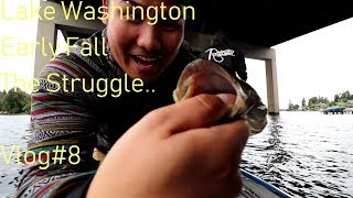 Lake Washington: Early Fall Bass Fishing VLOG#8 The Struggle..