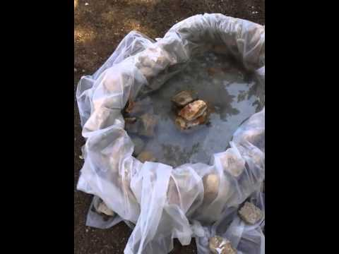Come costruire uno stagno youtube for Stagno giardino