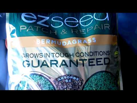 Scotts EZ Seed Review