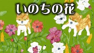 いのちの花─ペットの殺処分0を願う女子高生たち【日本図書館協会選定図...