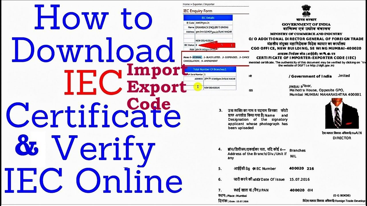 how to download iec certificate verify iec online at icegate youtube