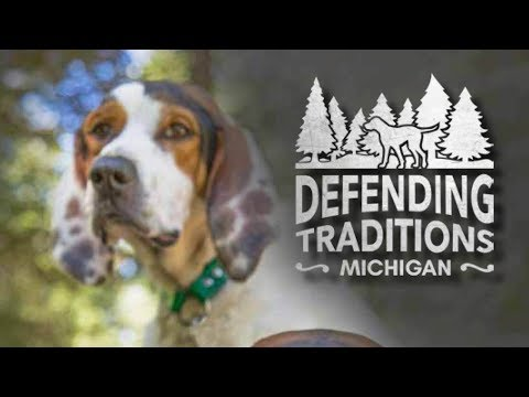 Hound hunting explained! Conservation, Tradition and the Heart of the Houndsman