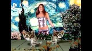 Alex C - Du Hast Den Schonsten Arsch Der Welt (Remix dj_jota33)