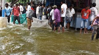 People catch fish on flooded road in Bengaluru