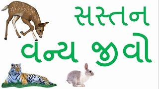Gujarat Forest Department Forest Guard Exam, GK in gujarati, General Knowledge, Awareness,GPSC