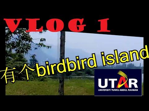 LuNaCy's Vlog#1 带你去看UTAR Kampar (1000订阅回馈) 巧遇Rickman谢承伟!