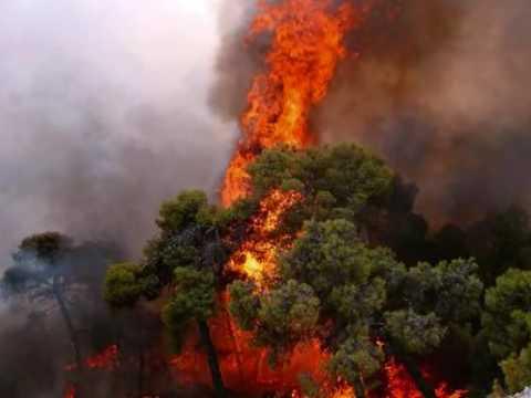 Evia fire 2007