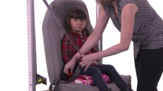 Car Seat 101 - Portable Booster Seats - Tot Squad & Mom.me