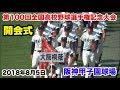 第100回全国高校野球選手権記念大会 開会式 入場行進 選手宣誓 阪神甲子園球場