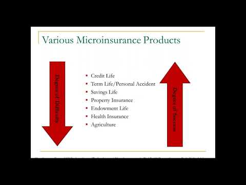 MicroInsurance in International Development   Uses,Challenges and Questions of Equity  Sponsored by