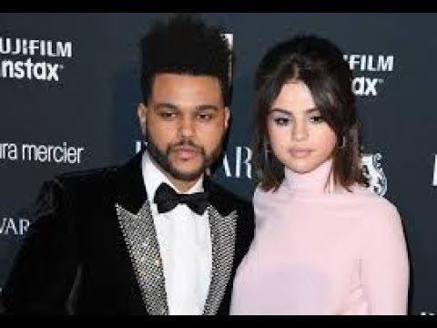 Selena Gomez & The Weeknd Relationship Reading