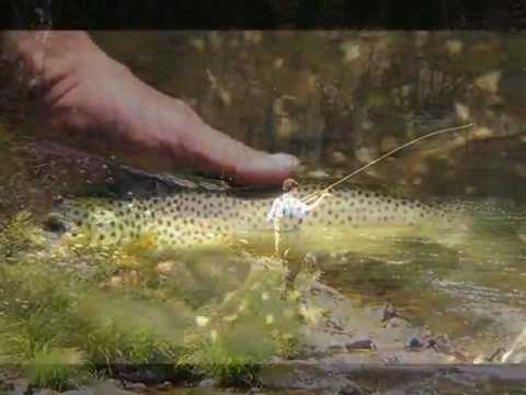 go-glamping in Portugal : fly-fishing