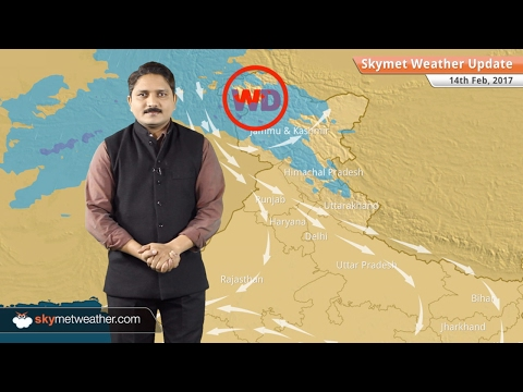 Weather Forecast for Feb 14: Rain in TN, Kerala; Snow in Kashmir, Himachal