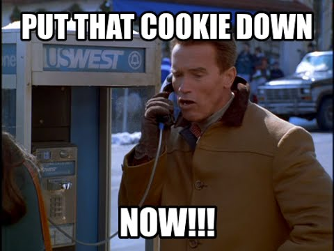 arnold schwarzenegger put that cookie down remix youtube