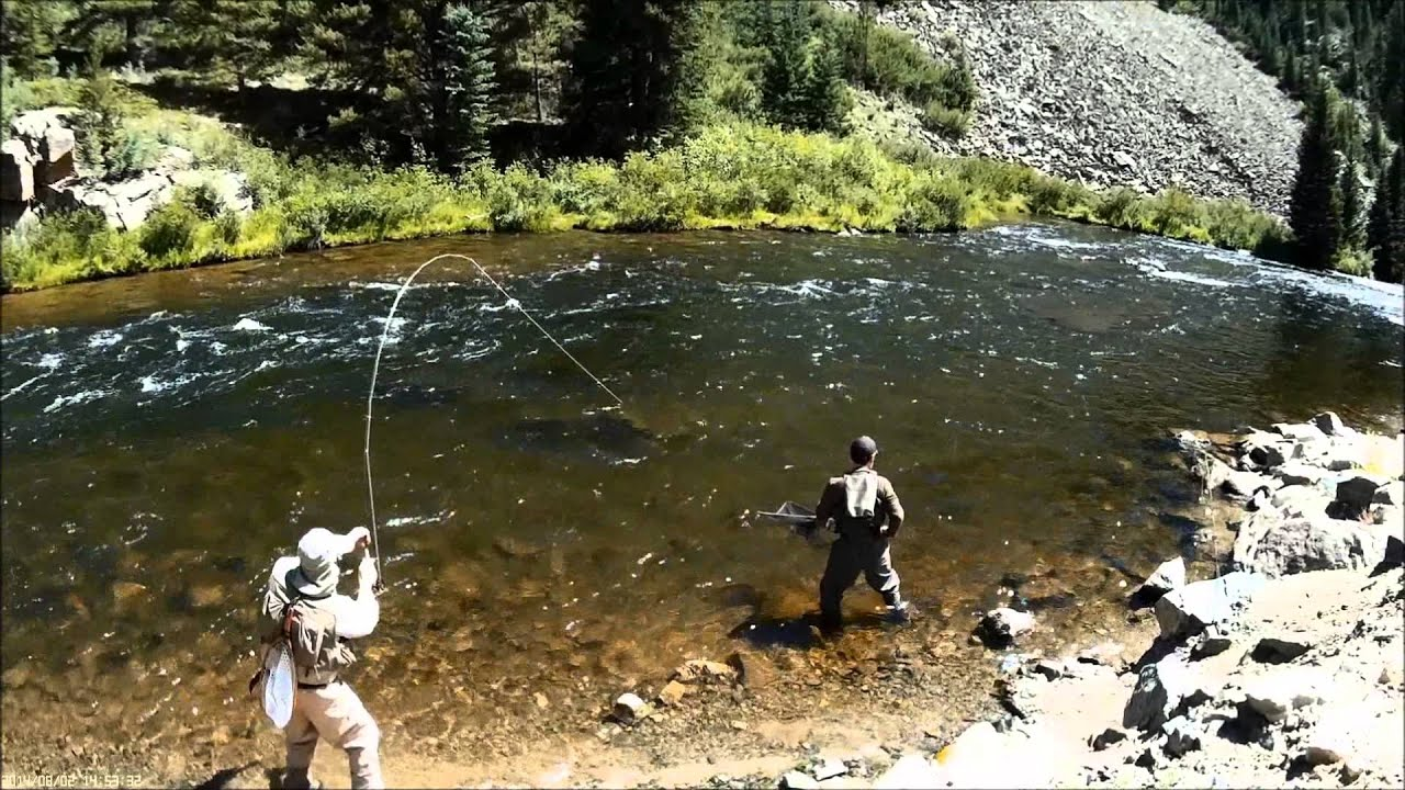 Taylor river colorado fly fishing part two youtube for Colorado river fly fishing