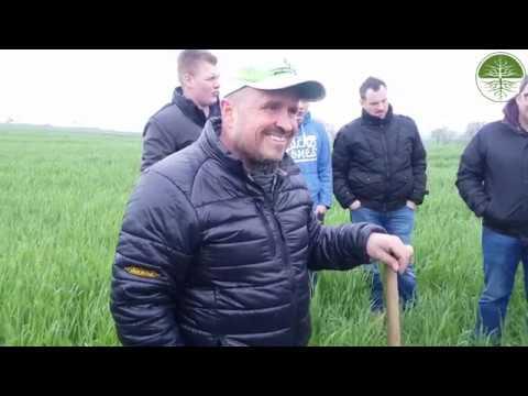 Michael Reber | Bodenfruchtbarkeitstag Feldrundgang Feld 1| Bodenfruchtbarkeit  (2019)