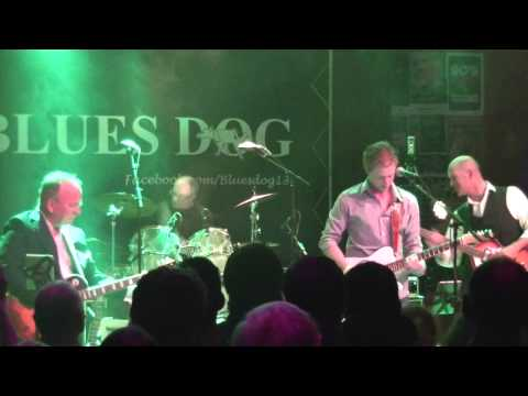 Blues Dog Playing Still Rainin' Of Jonny Lang  During Their Concert @ Podium De Vorstin