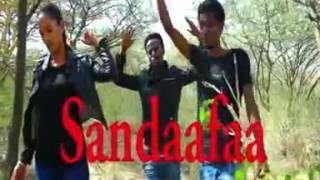 **NEW** Gaaddisee Shamsaddiin,  Sa'aad Awwal & Gammachuu Ahmad #OromoProtests 2015