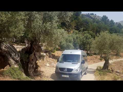MERCEDES SPRINTER: 16 SEATS + DRIVER