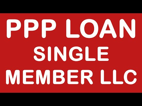PPP Loan Application For Single-Member LLC And S-Corporations