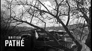 History: Fascist Italian Prisoners Get Kicked Out Of Ethiopia (1943) የፋሽስት ጣሊያን እስረኞች ከኢትዮጵያ  ወደ አገራ