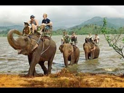 Về Đắk Lắk cưỡi voi Bản Đôn vượt dòng Sêrêpôk hùng vĩ