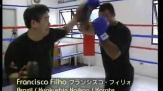 Francisco Filho K-1 Highlights.