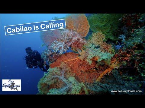 Sea Explorers   Cabilao is Callling 4K