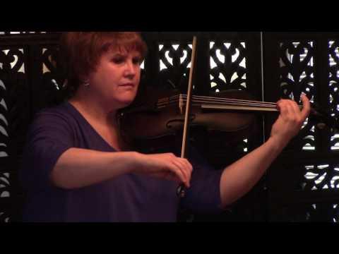 Glasser Carbon Violin