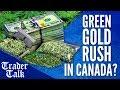✅Green Gold Rush in Canada?     Trader Talk E04