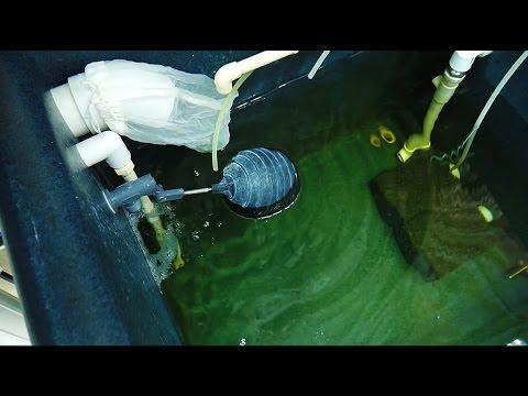 Part 6 - Nutrient Tank & Automation - Basement Hydroponic LED Garden Tour