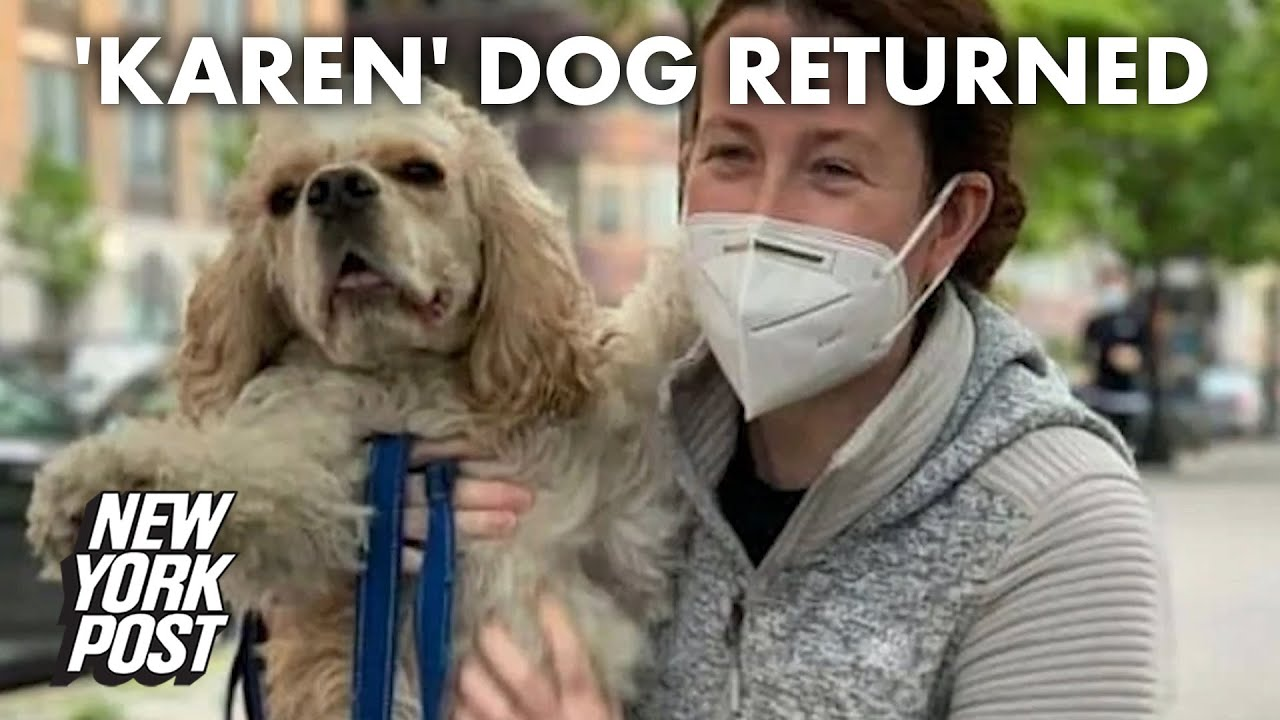 Central Park KKKaren gets  dog back after false 911 call on Black man