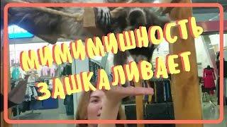 видео Достопримечательности и развлечения в Одессе для детей и взрослых