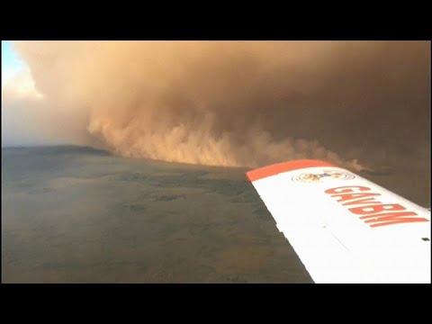 Waldbrände ufern aus: Brasilien bangt um UNESCO-Welterbe Pantanal