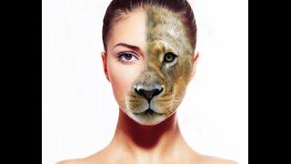 Lion Face - Photo Manipulation (Photoshop) screenshot 4