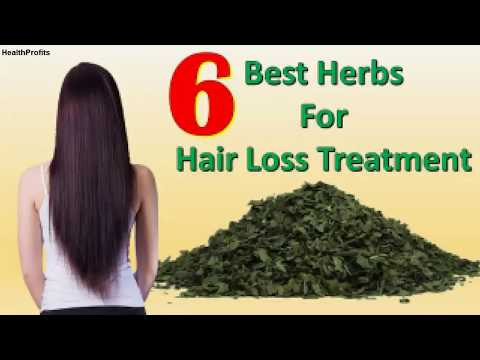 6 Best Herbs for Hair Loss Treatment Natural Solution