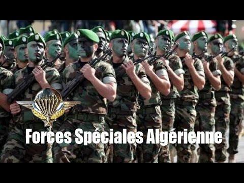 Algerian special forces para (RPC) استعراض للقوات الخاصة الجزائرية
