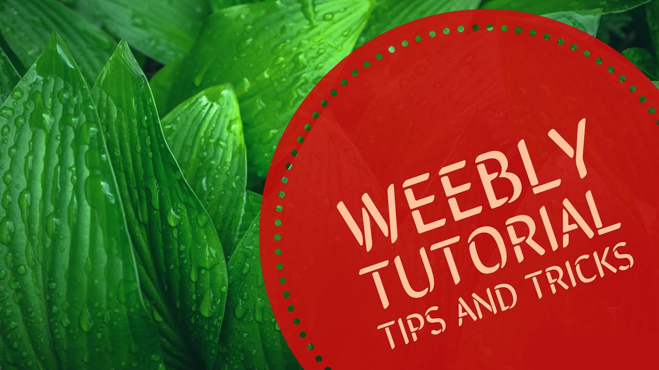 Weebly tutorial build your own free website youtube.