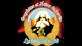 Ludwig von 88 - Eddie Van Halen