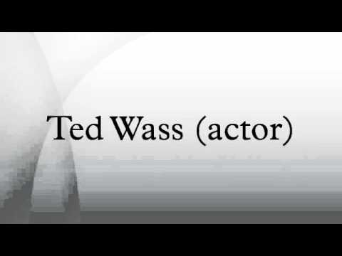 Ted Wass actor