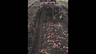 Картофелекопалка(2х рядная., 2016-08-02T07:31:31.000Z)