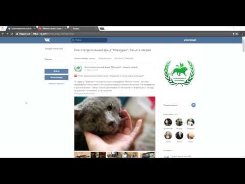 Видеоинструкция подачи заявления в МВД  в электронном виде о жестоком обращении с животными