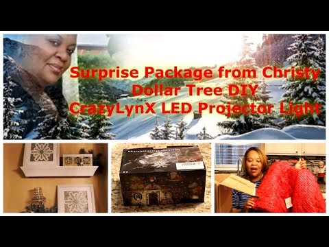 Surprise Package   Dollar Tree Pictures (DIY)   Projector Light Review!