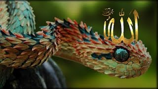 Flat Earth - Bible and Quran Connection: Djinns/Reptilians/Serpents/Atlanteans