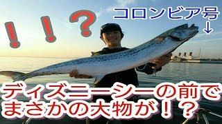 東京ディズニーシーの前で釣りをしたらこんな大物が!!!