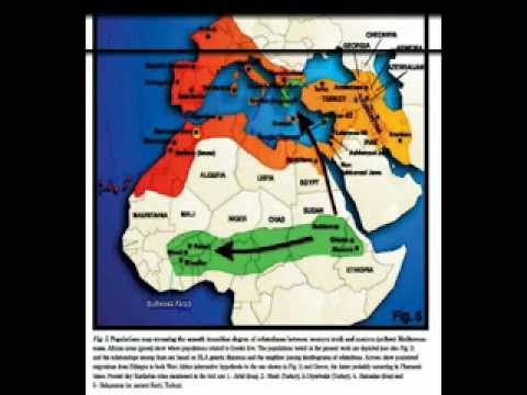 BEYTE ISRAEL Lost Black Sheep African Migration Maps Pre SLAVERY